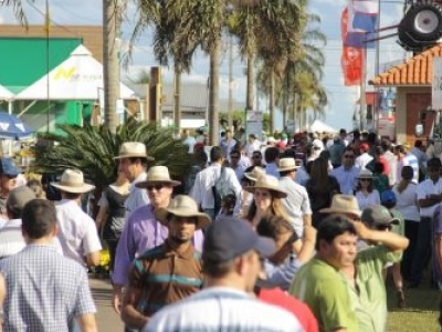 Programa oferece crédito para produtores adquirirem energia solar, em Goiás