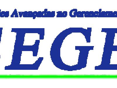 Grupo Segel