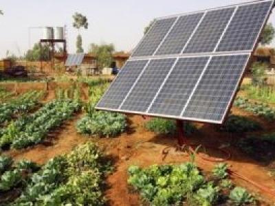 Nova linha de crédito financia energia solar a agricultores familiares