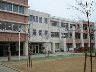 Cidade aluga topos de telhados de escolas para geração de energia solar