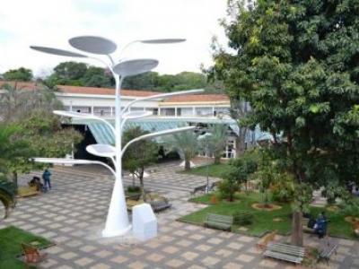 UFG e IFG ganham instalação de árvores solares
