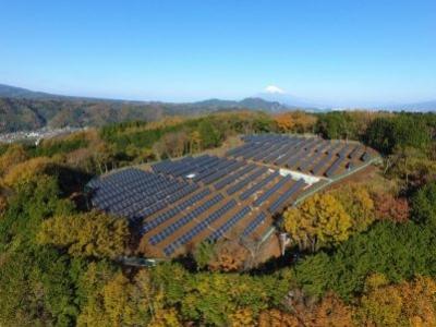 Painéis solares em terras agrícolas poderiam atender demanda energética mundial